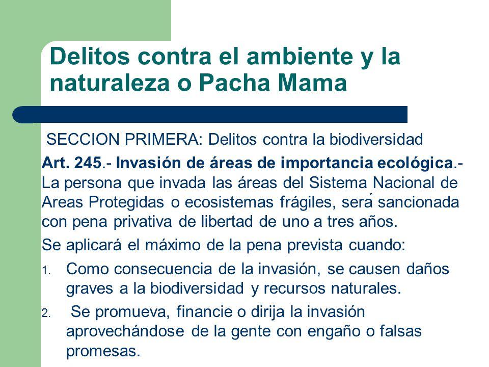 Delitos contra el ambiente y la naturaleza o Pacha Mama