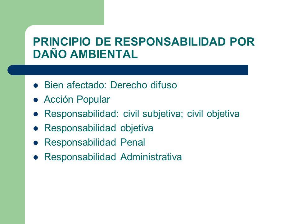 PRINCIPIO DE RESPONSABILIDAD POR DAÑO AMBIENTAL
