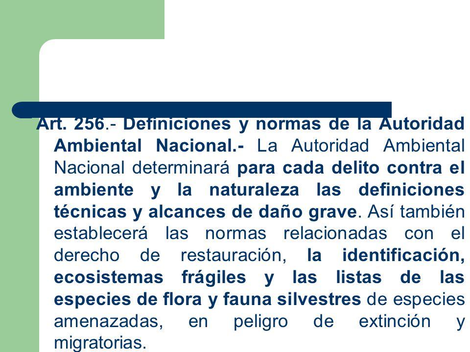 Art. 256. - Definiciones y normas de la Autoridad Ambiental Nacional