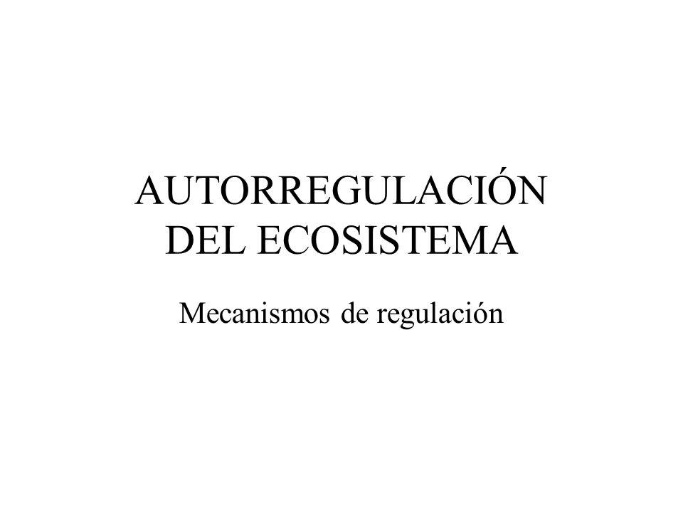 AUTORREGULACIÓN DEL ECOSISTEMA