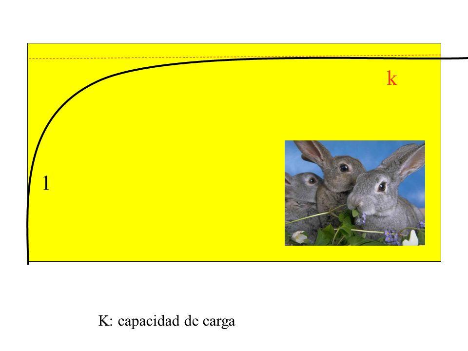 k 1 K: capacidad de carga
