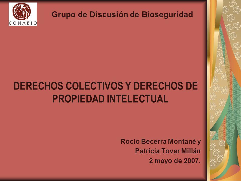 DERECHOS COLECTIVOS Y DERECHOS DE PROPIEDAD INTELECTUAL