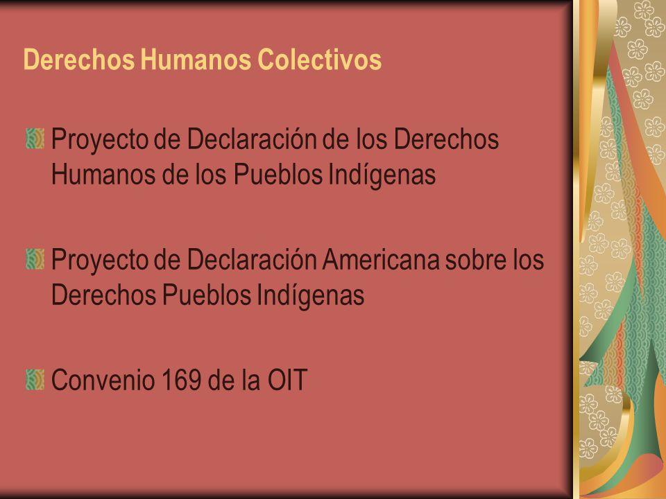 Derechos Humanos Colectivos