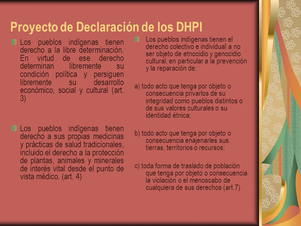 Proyecto de Declaración de los DHPI