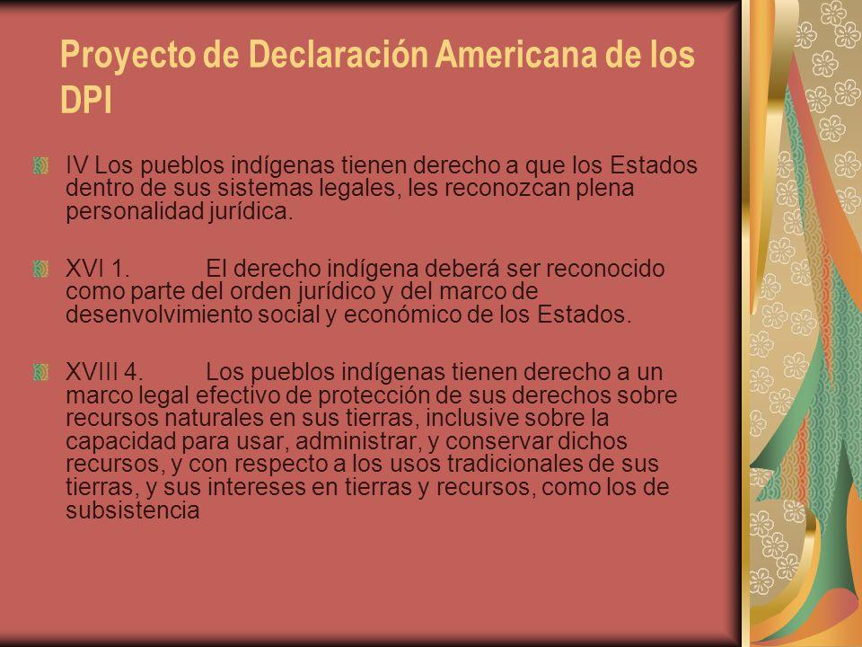Proyecto de Declaración Americana de los DPI