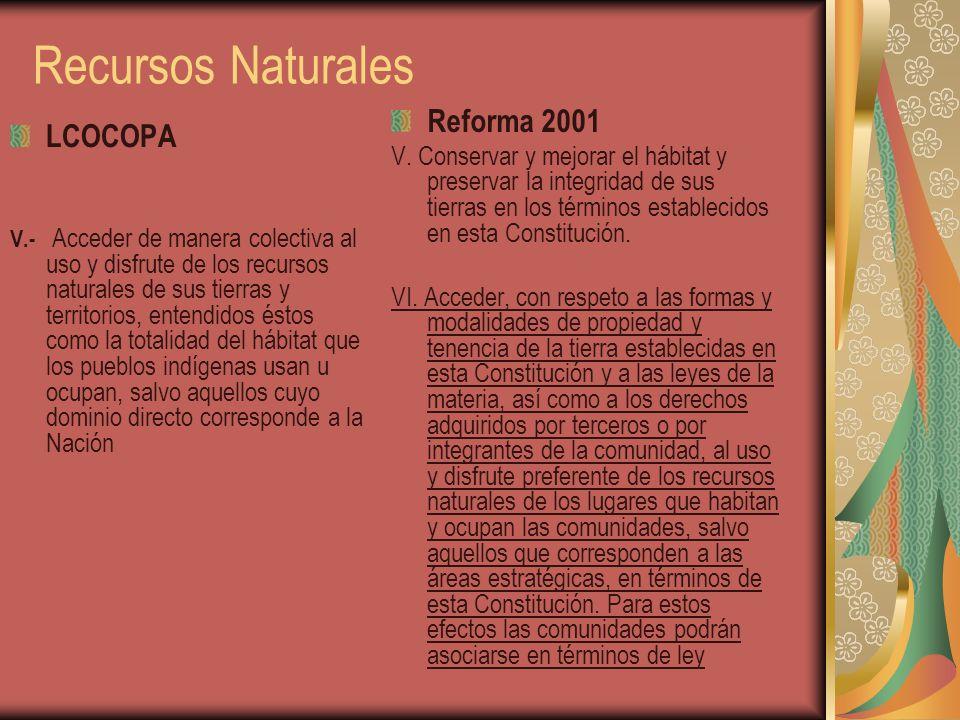 Recursos Naturales Reforma 2001 LCOCOPA