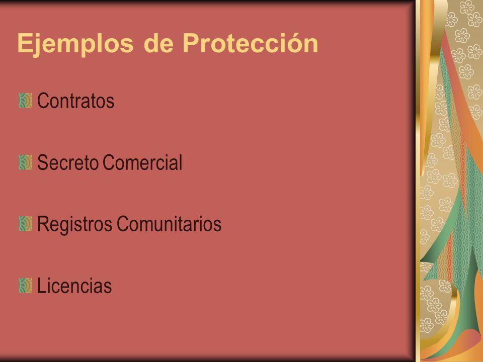 Ejemplos de Protección