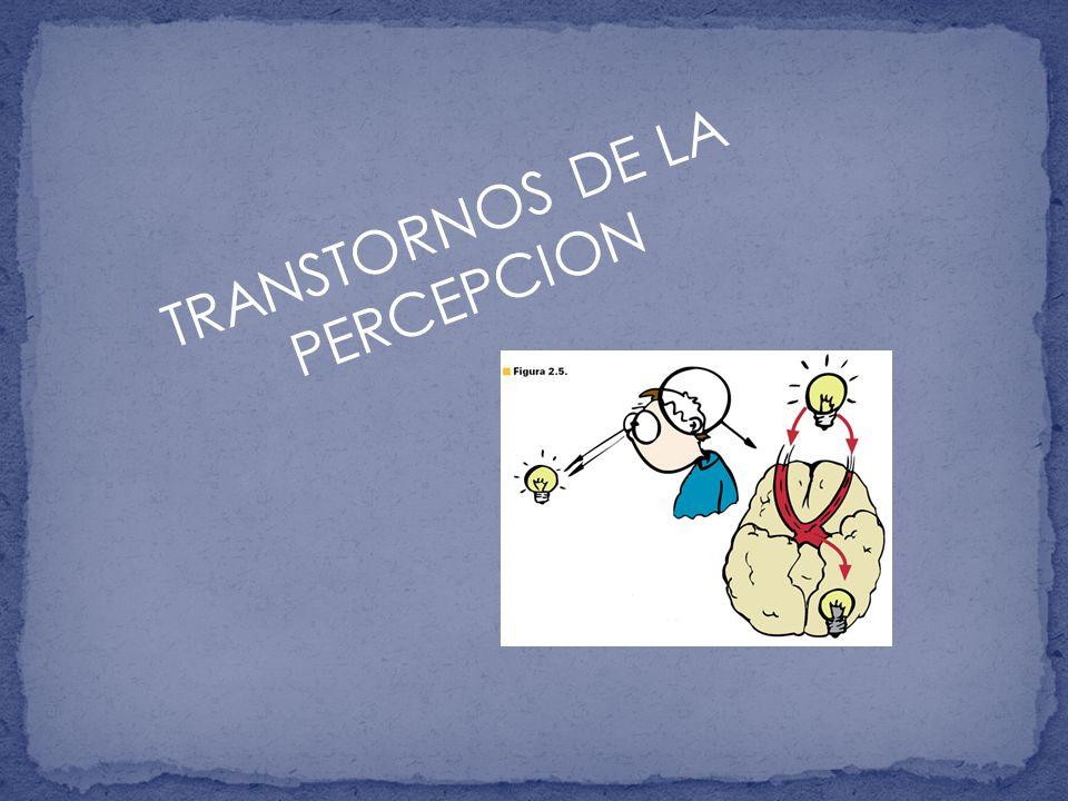 TRANSTORNOS DE LA PERCEPCION