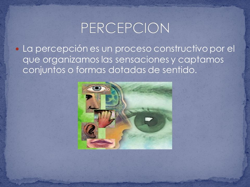 PERCEPCION La percepción es un proceso constructivo por el que organizamos las sensaciones y captamos conjuntos o formas dotadas de sentido.