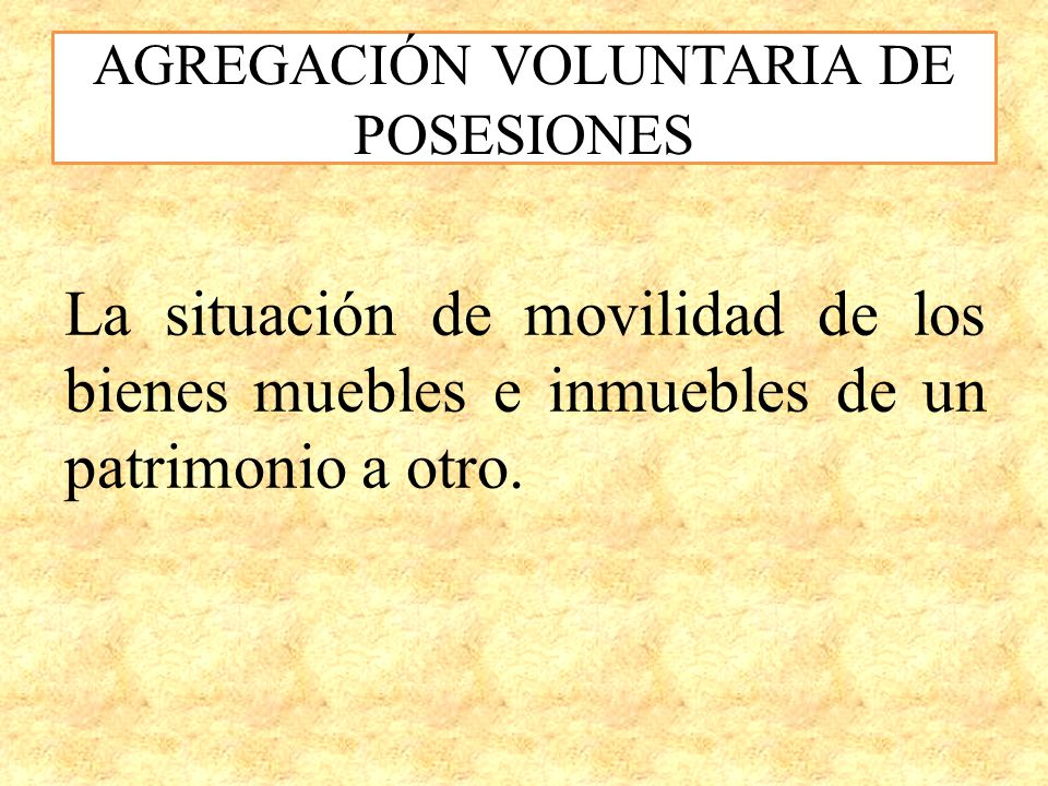 AGREGACIÓN VOLUNTARIA DE POSESIONES