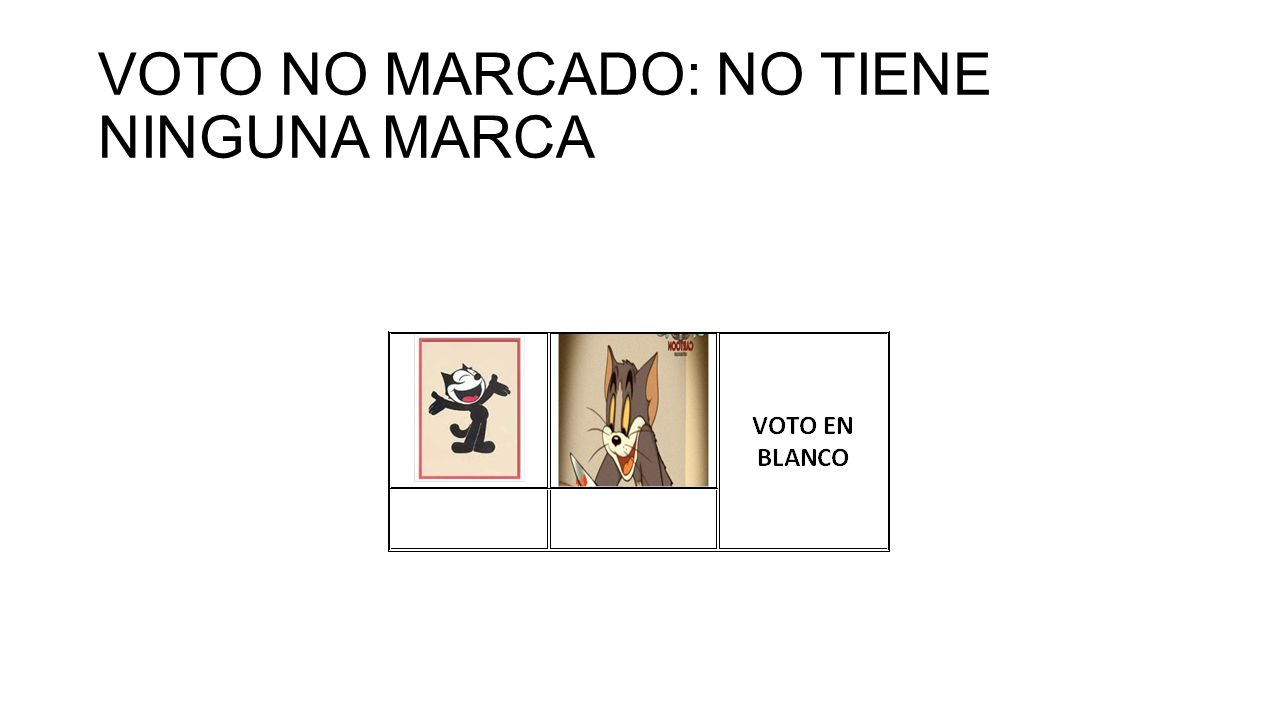 VOTO NO MARCADO: NO TIENE NINGUNA MARCA