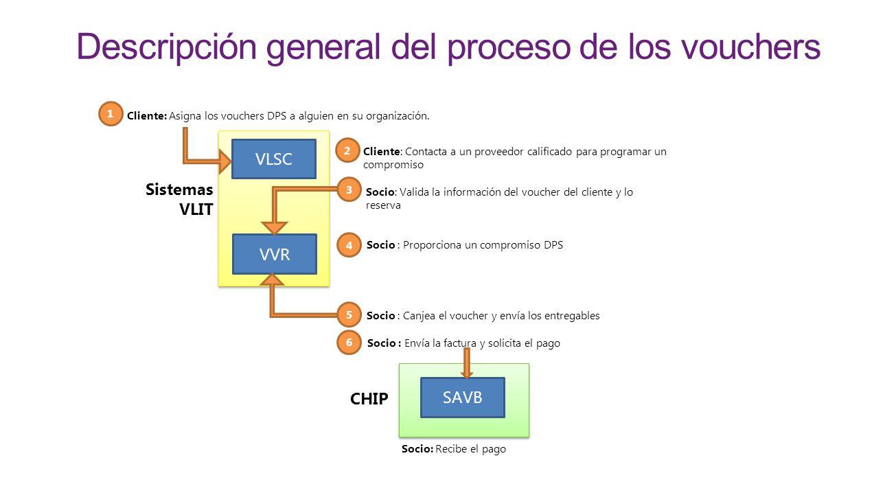 Descripción general del proceso de los vouchers