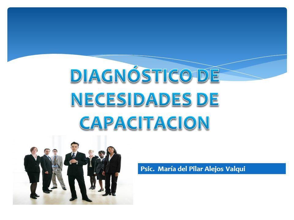 DIAGNÓSTICO DE NECESIDADES DE CAPACITACION