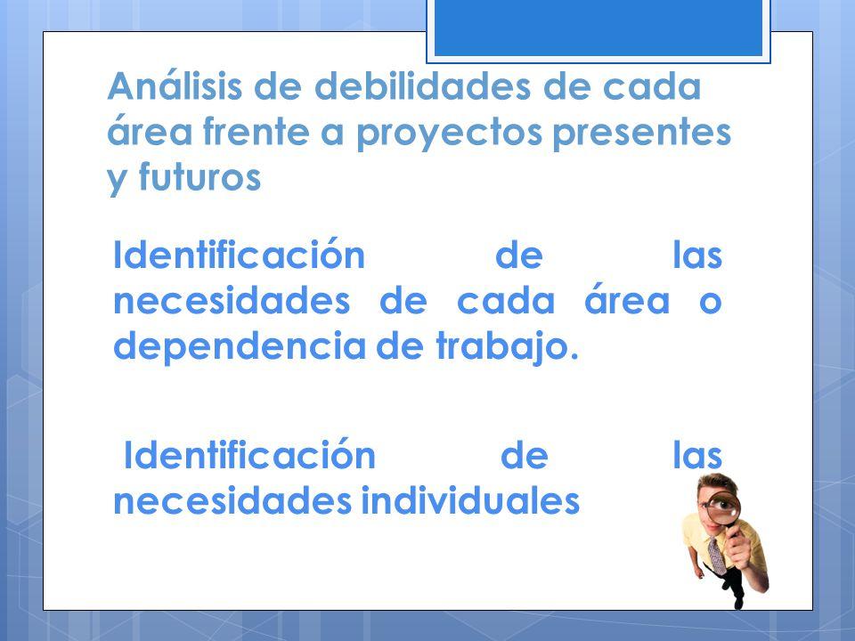 Análisis de debilidades de cada área frente a proyectos presentes y futuros