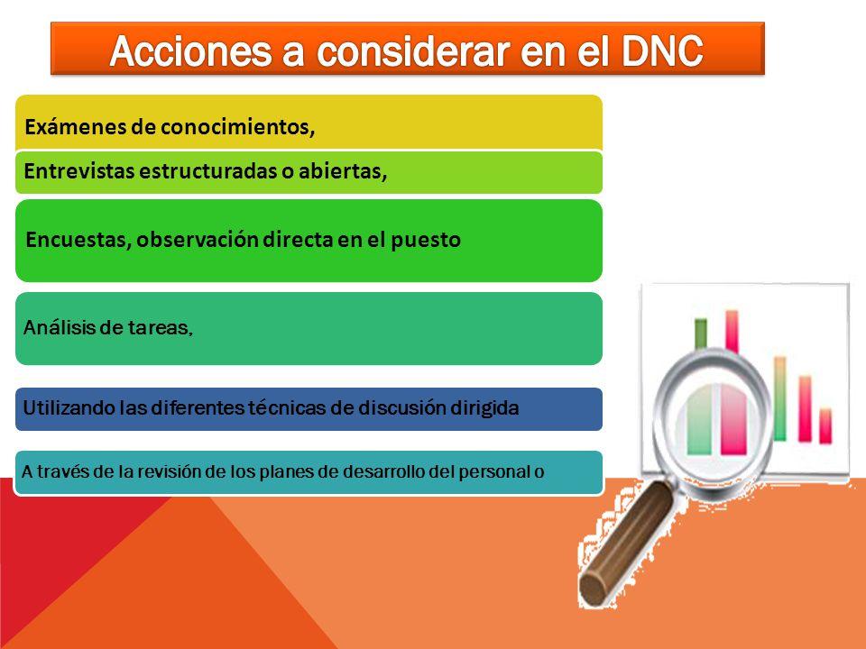 Acciones a considerar en el DNC