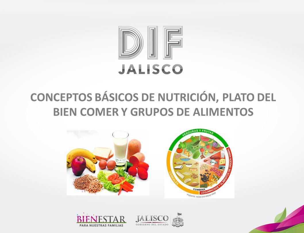 CONCEPTOS BÁSICOS DE NUTRICIÓN, PLATO DEL BIEN COMER Y GRUPOS DE ALIMENTOS