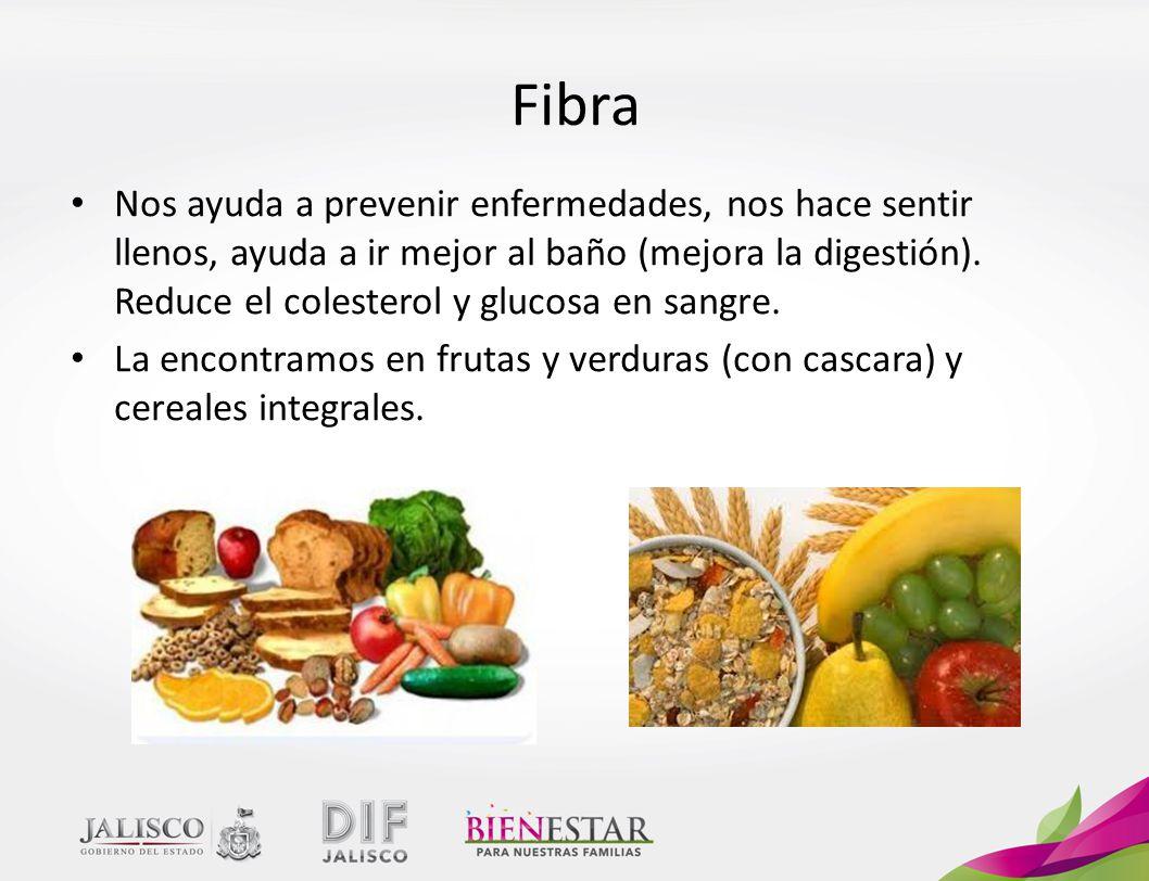 Alimentaci n la alimentaci n es el conjunto de acciones - Alimentos para ir al bano inmediatamente ...