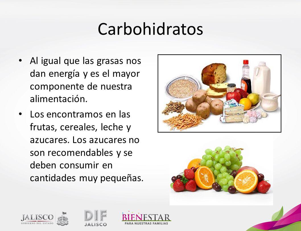 Carbohidratos Al igual que las grasas nos dan energía y es el mayor componente de nuestra alimentación.