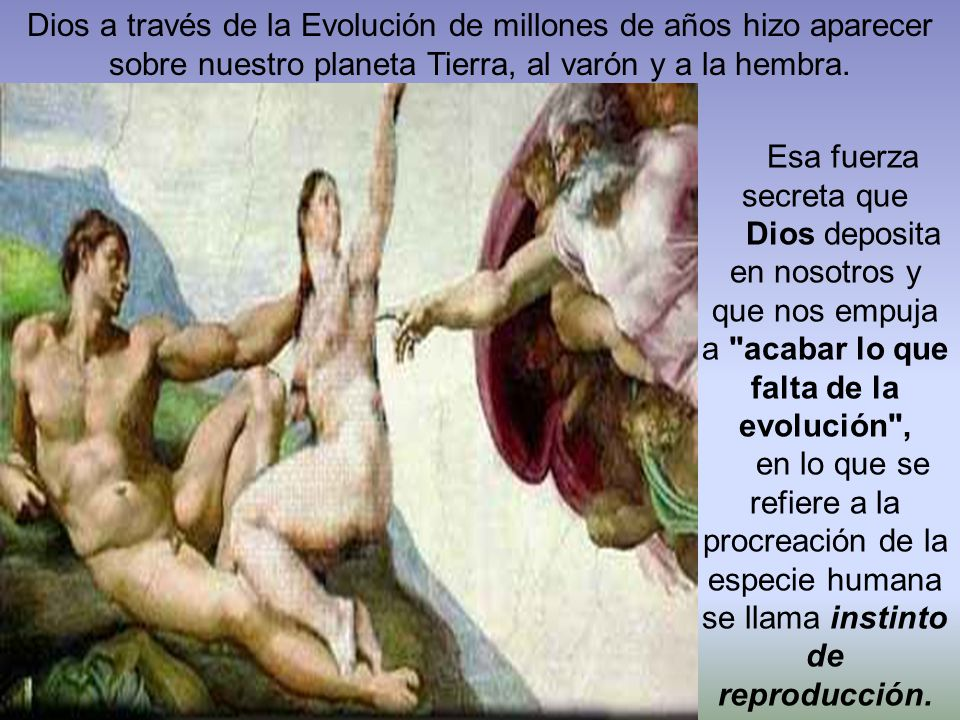Dios a través de la Evolución de millones de años hizo aparecer sobre nuestro planeta Tierra, al varón y a la hembra.