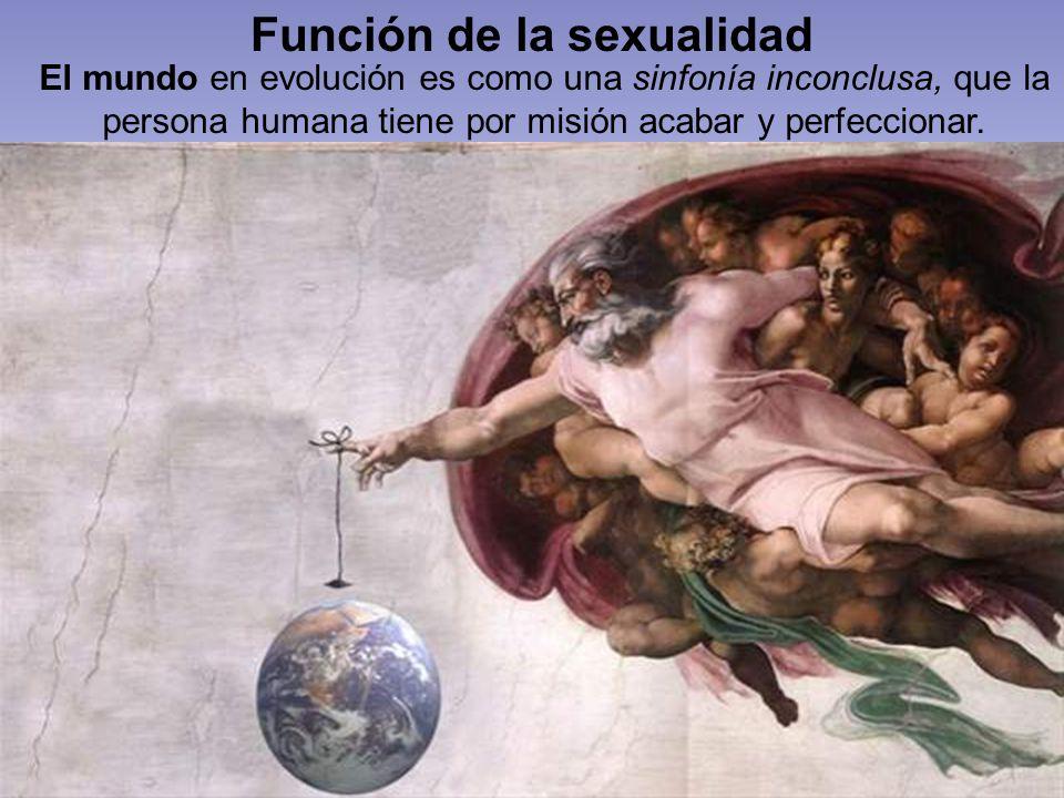 Función de la sexualidad