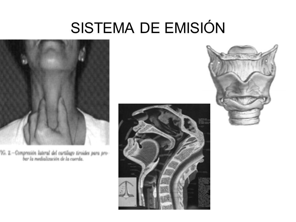 SISTEMA DE EMISIÓN