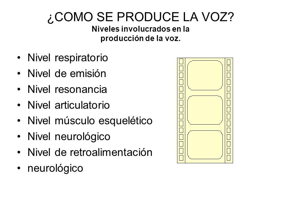 ¿COMO SE PRODUCE LA VOZ Niveles involucrados en la producción de la voz.