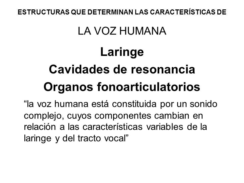 ESTRUCTURAS QUE DETERMINAN LAS CARACTERÍSTICAS DE LA VOZ HUMANA