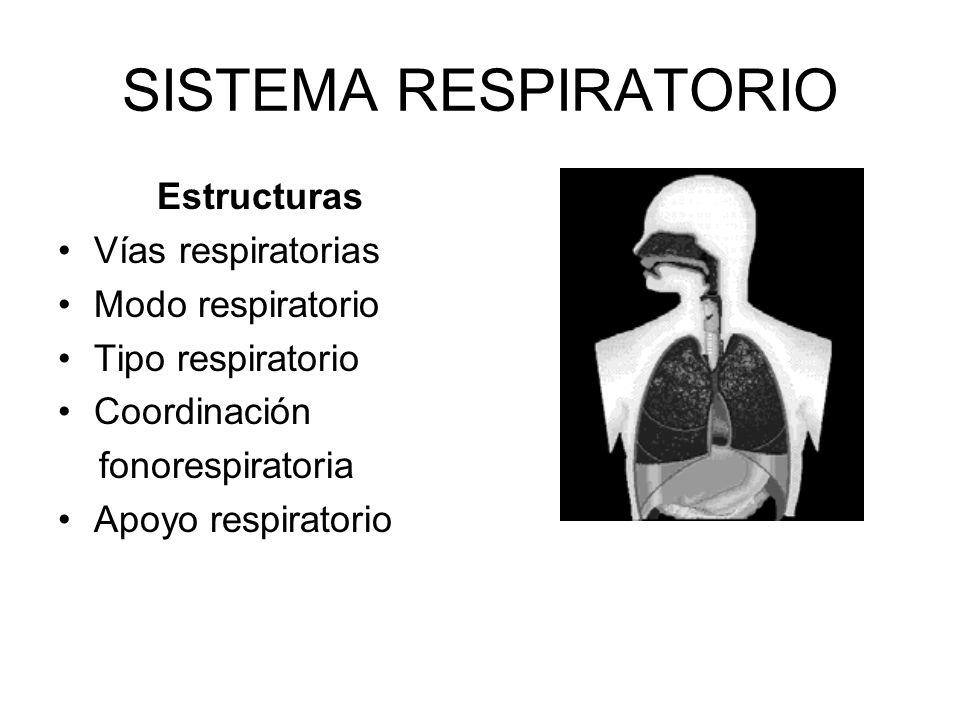 SISTEMA RESPIRATORIO Estructuras Vías respiratorias Modo respiratorio