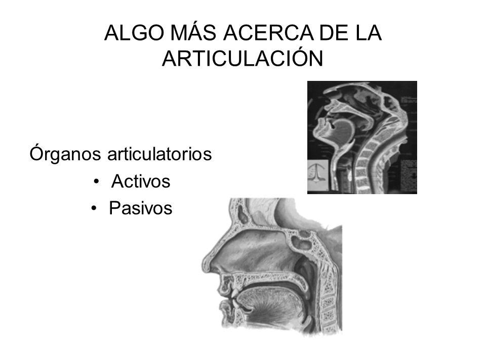 ALGO MÁS ACERCA DE LA ARTICULACIÓN