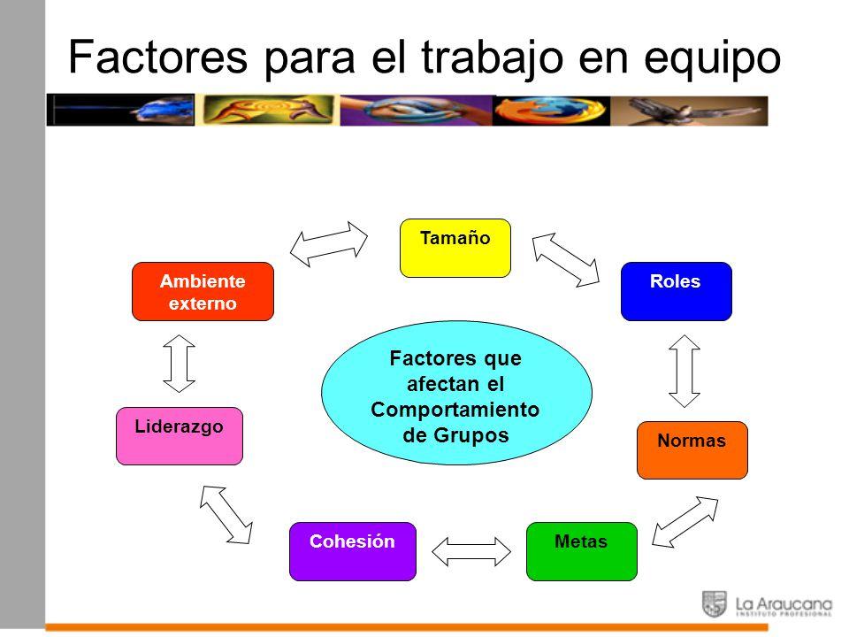 Factores para el trabajo en equipo