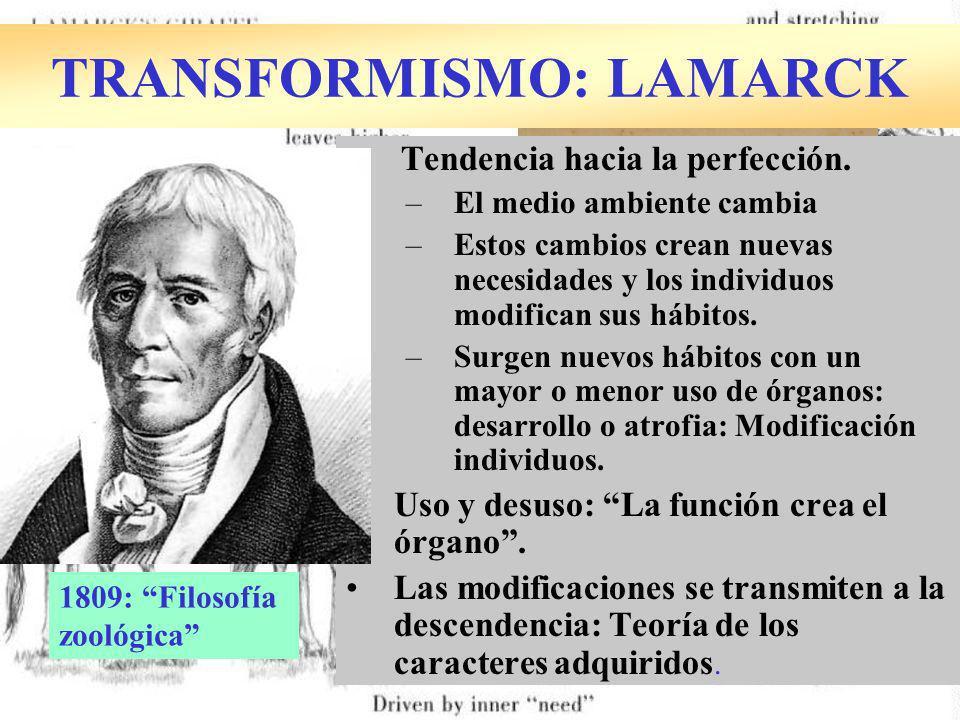 TRANSFORMISMO: LAMARCK