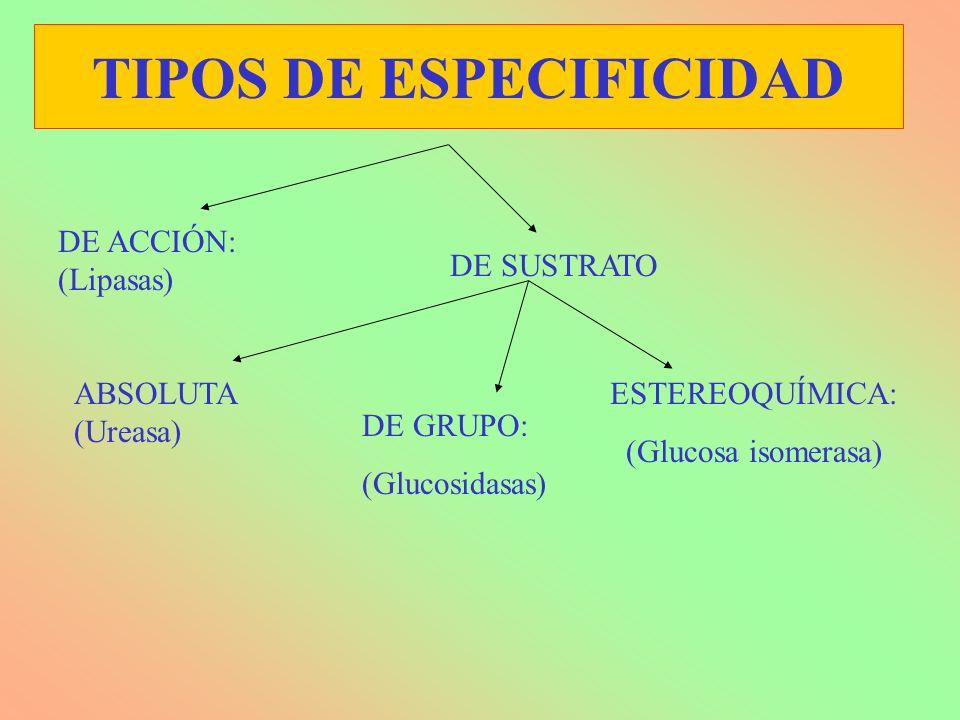 TIPOS DE ESPECIFICIDAD