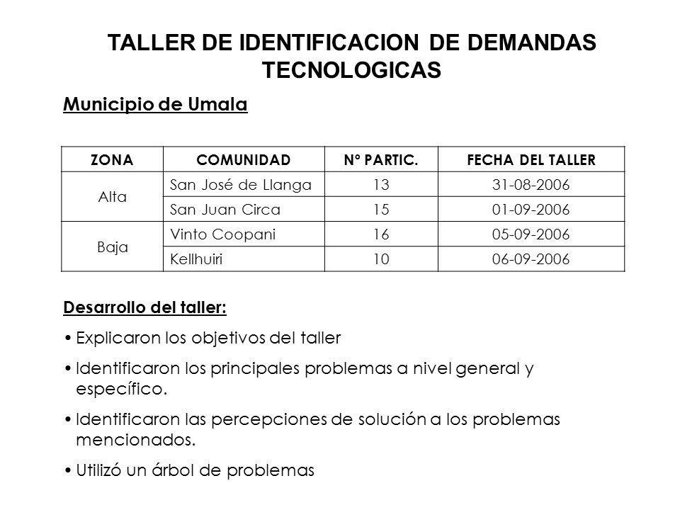 TALLER DE IDENTIFICACION DE DEMANDAS TECNOLOGICAS