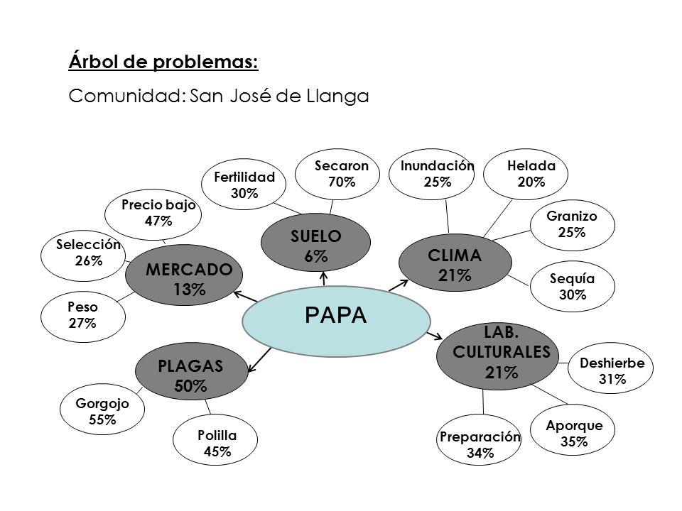 PAPA Árbol de problemas: Comunidad: San José de Llanga SUELO 6% CLIMA