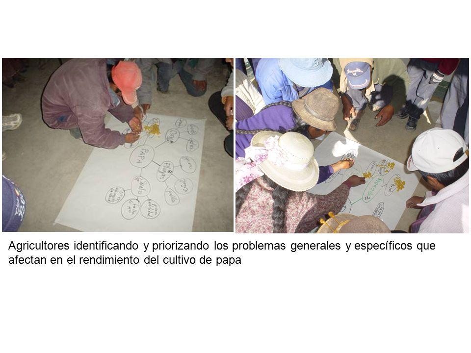 Agricultores identificando y priorizando los problemas generales y específicos que afectan en el rendimiento del cultivo de papa