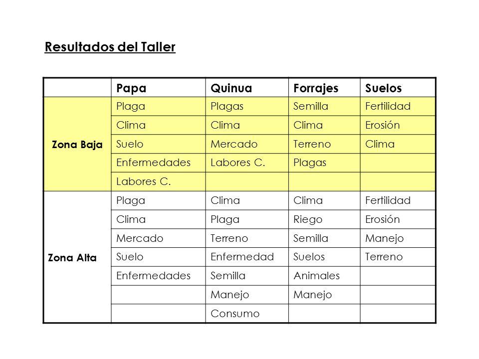 Resultados del Taller Papa Quinua Forrajes Suelos Zona Baja Plaga