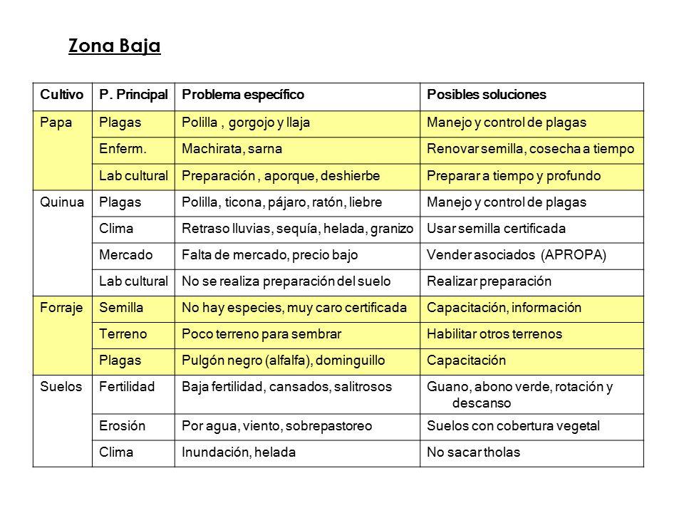 Zona Baja Cultivo P. Principal Problema específico Posibles soluciones