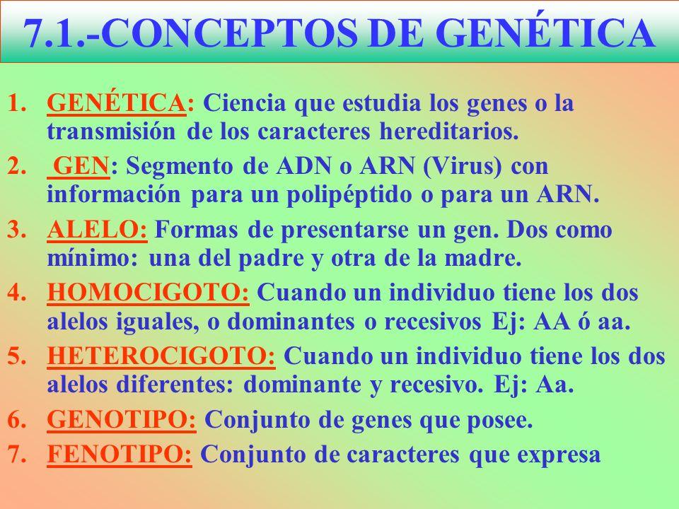 7.1.-CONCEPTOS DE GENÉTICA