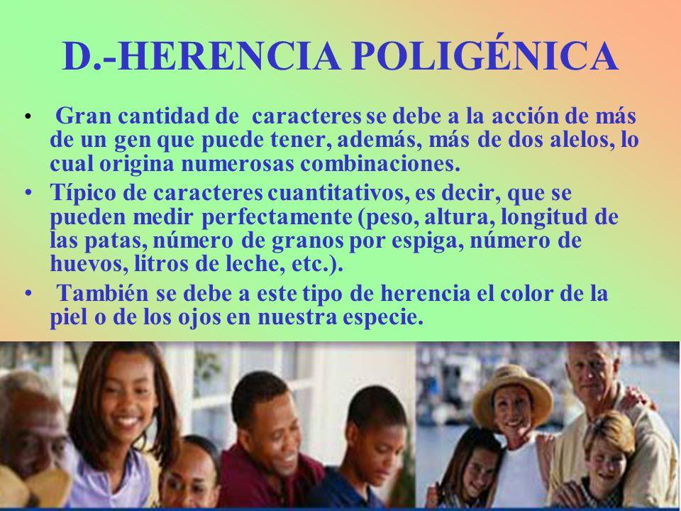 D.-HERENCIA POLIGÉNICA