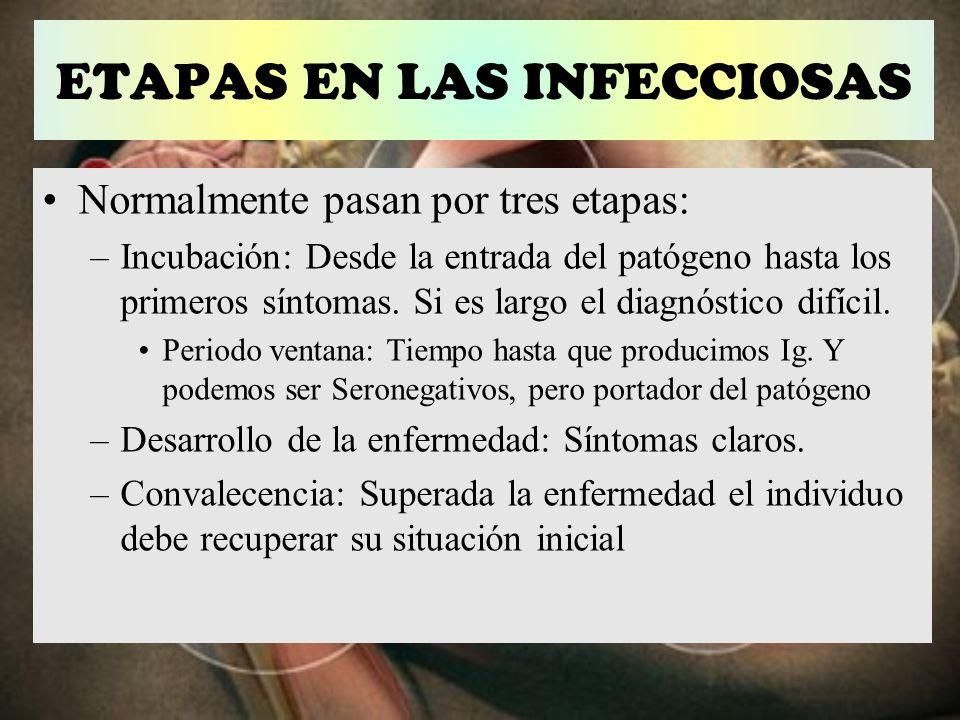 ETAPAS EN LAS INFECCIOSAS