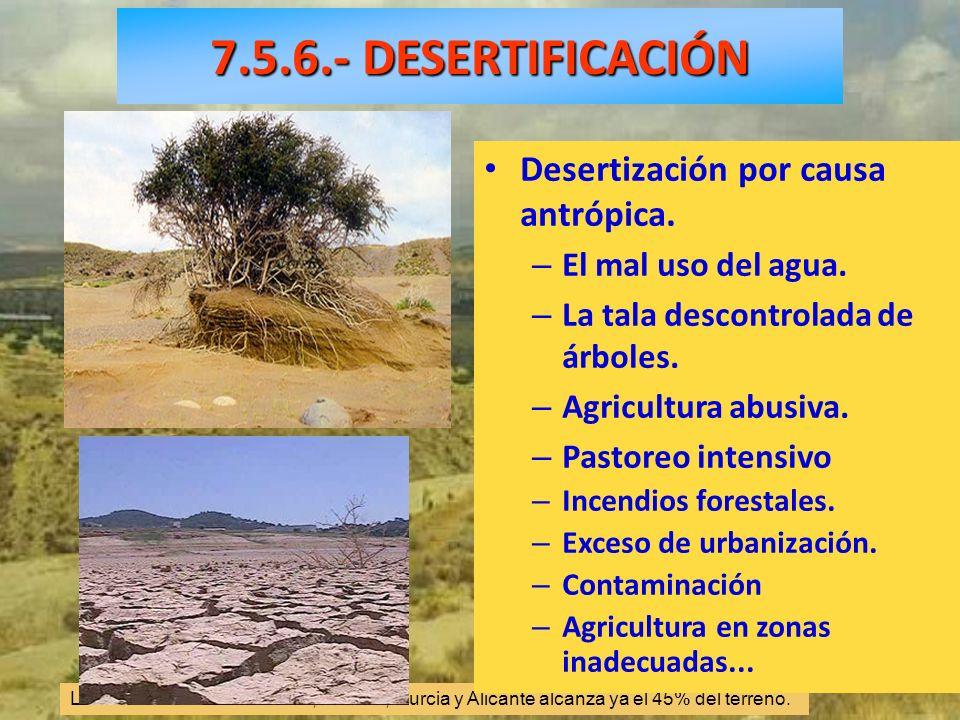 7.5.6.- DESERTIFICACIÓN Desertización por causa antrópica.