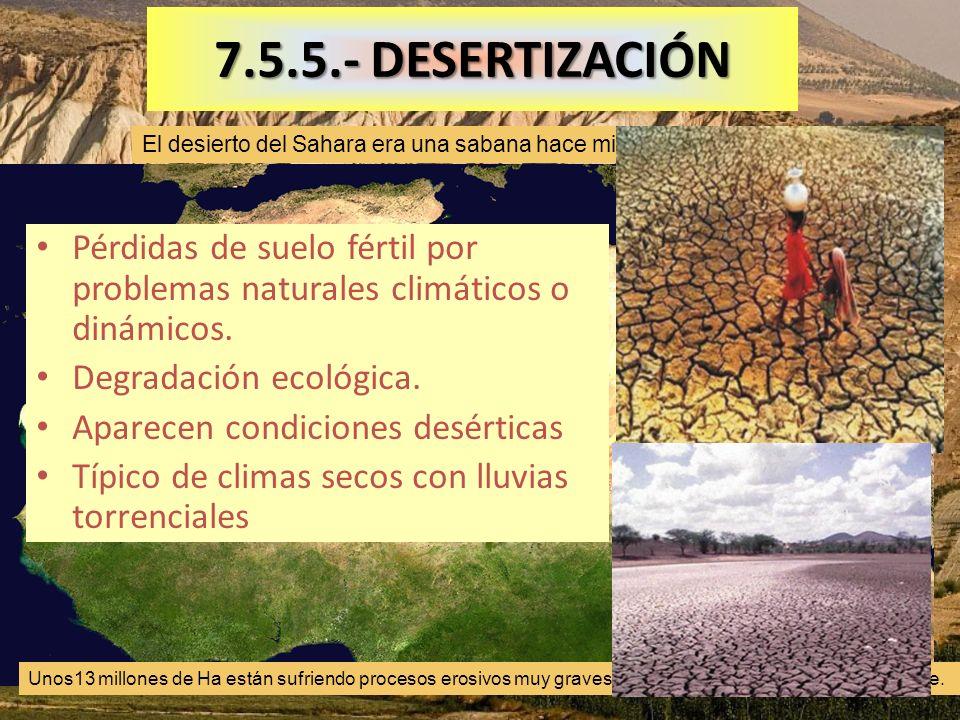 7.5.5.- DESERTIZACIÓN El desierto del Sahara era una sabana hace miles de años.