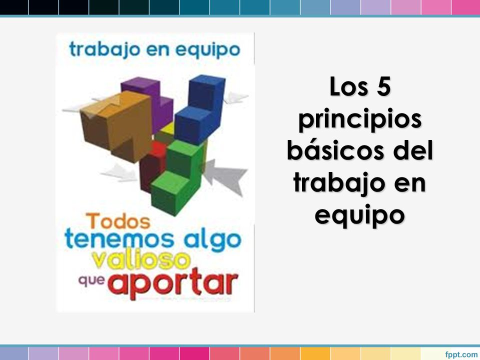 Los 5 principios básicos del trabajo en equipo