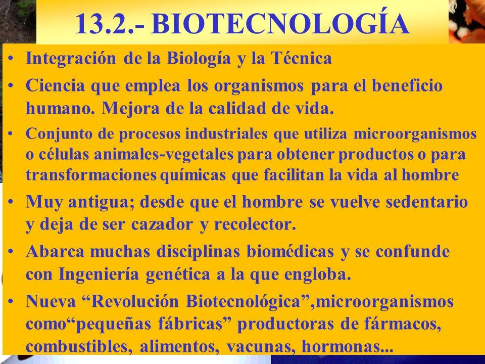 13.2.- BIOTECNOLOGÍA Integración de la Biología y la Técnica