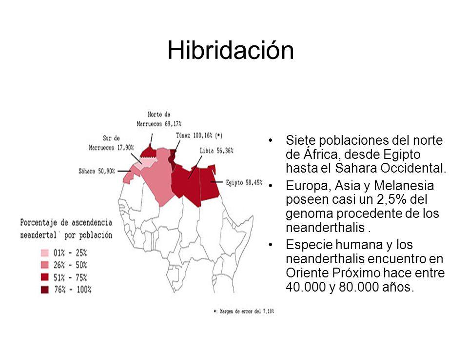 HibridaciónSiete poblaciones del norte de África, desde Egipto hasta el Sahara Occidental.