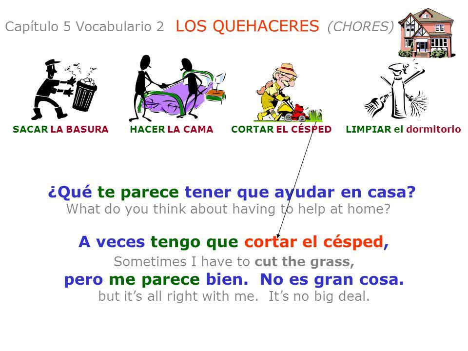 Capítulo 5 Vocabulario 2 LOS QUEHACERES (CHORES)