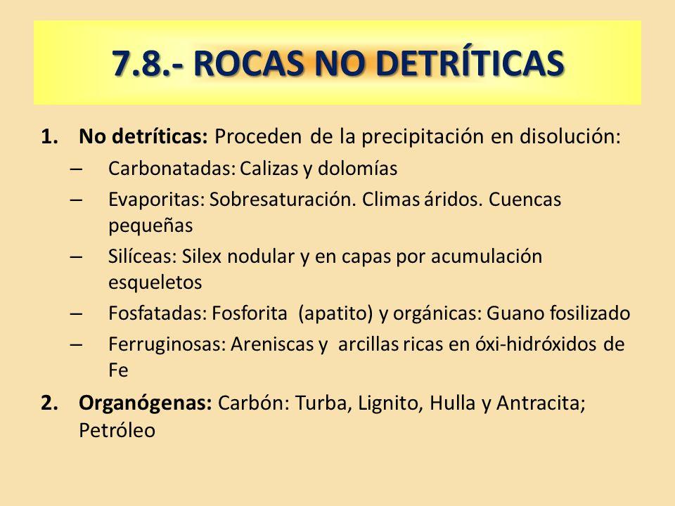 7.8.- ROCAS NO DETRÍTICAS No detríticas: Proceden de la precipitación en disolución: Carbonatadas: Calizas y dolomías.