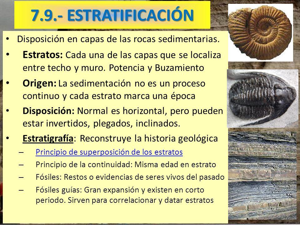7.9.- ESTRATIFICACIÓN Disposición en capas de las rocas sedimentarias.