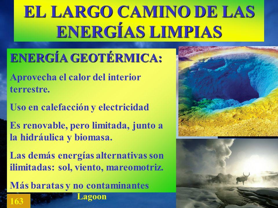 EL LARGO CAMINO DE LAS ENERGÍAS LIMPIAS