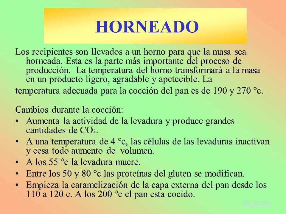 HORNEADO